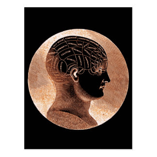 Antique Style Golden Mind Phrenology head Postcard