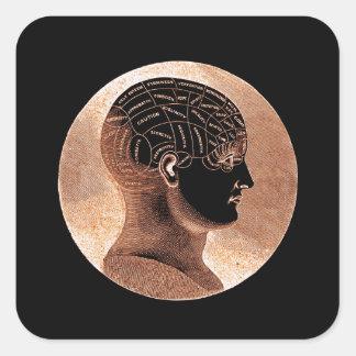Antique Style Golden Mind Phrenology head Square Sticker