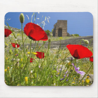 Antique theater in Acropolis of Pergamon Mouse Pad