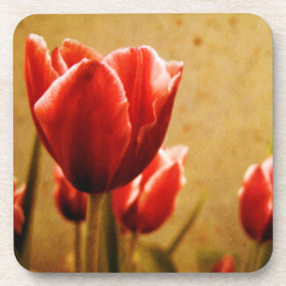 Antique Tulips Beverage Coaster