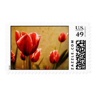 Antique Tulips Postage Stamps