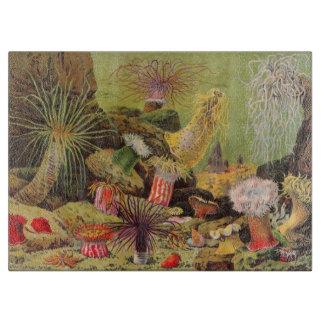 Antique Under The Sea Anemone Cutting Board