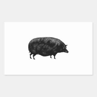 Antique Vintage Pig Rectangular Sticker