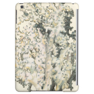 Antique Watercolor Coral iPad Air Cover