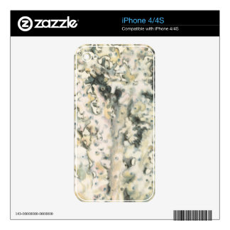 Antique Watercolor Coral iPhone 4S Skins
