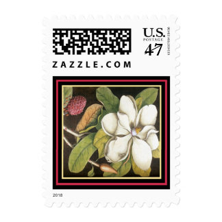 Antique White Magnolia & Red Seed Pod Postage