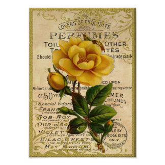 Antique Yellow Roses Perfume Poster