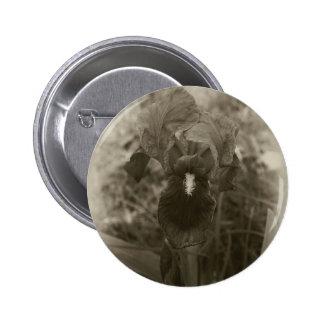 Antiqued Blue Iris 5 Pinback Button