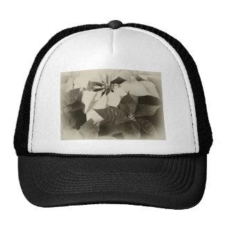 Antiqued Mixed Color Poinsettias 2 Trucker Hat