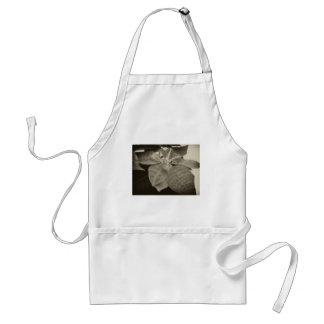 Antiqued Pink Poinsettia 2 Adult Apron