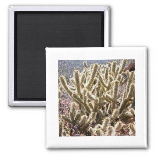 Antler Cactus 2 Inch Square Magnet