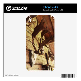 Antler Collection Skin For iPhone 4