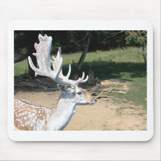 Antlers Mouse Pad