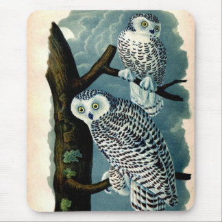 Antque Snowy Owl Natural History Print Mouse Pad