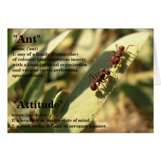 Ants & Attitude - Greeting Card #2