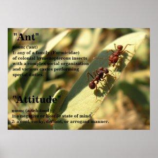 Ants & Attitude - Poster #2 print