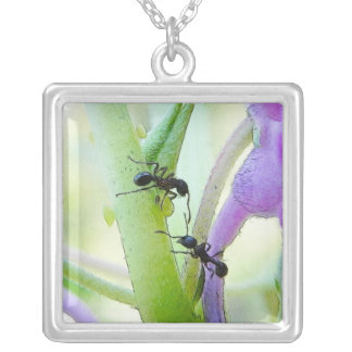Ants In My Plants Square Pendant Necklace