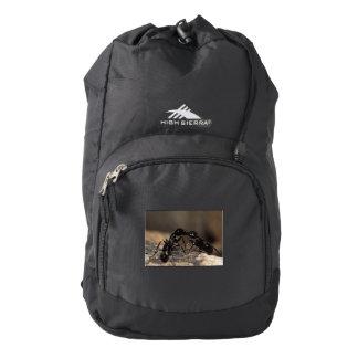 ants kissing backpack