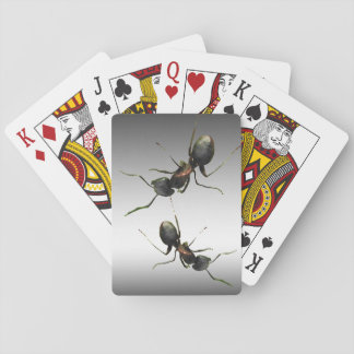 Ants Playing Cards