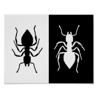 Ants Poster