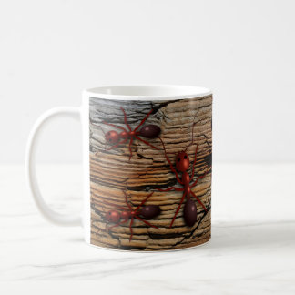 "Antz N' Wood ""Infested"" Mugs"