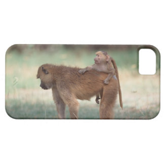 Anubis Baboon iPhone SE/5/5s Case