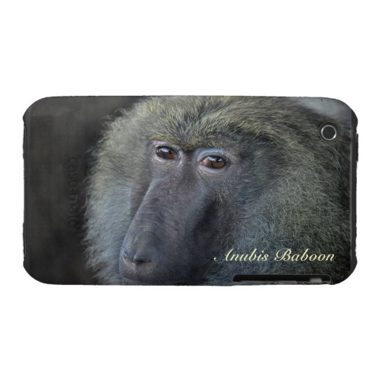 Anubis Baboon Monkey Animal-Lover iPhone 4 Case
