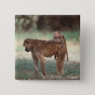 Anubis Baboon Pinback Button