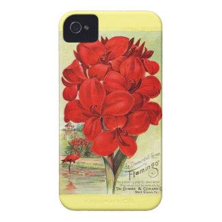 Anuncio botánico del vintage - flamenco Cannas Case-Mate iPhone 4 Cárcasas