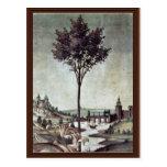 Anuncio de Botticelli Sandro (la mejor calidad) Tarjetas Postales