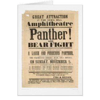 Anuncio de la lucha de la pantera y del oso tarjeta de felicitación