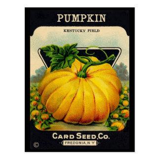 Anuncio de la semilla de Pumplin del vintage Postales