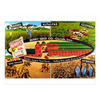 Anuncio de la semilla del vintage postal