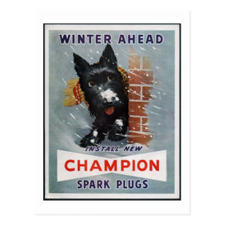 Anuncio de las bujías del campeón del vintage tarjetas postales