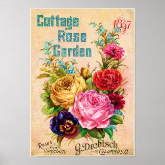 Anuncio del vintage de la rosaleda de la cabaña póster