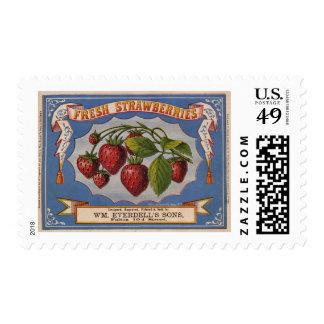 Anuncio del vintage para las fresas frescas circa sello postal