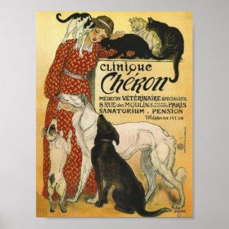 Anuncio francés del veterinario del vintage de la  póster