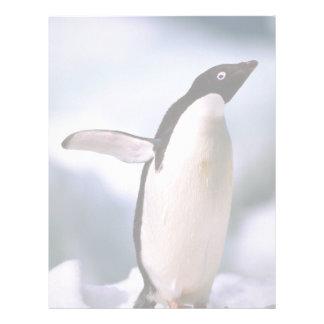 ¿Anuncio? pingüino de la mentira Membrete