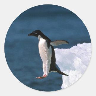 ¿Anuncio? pingüinos de la mentira que saltan de un Pegatina Redonda