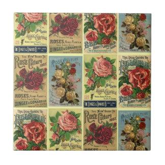 Anuncios de los rosas de la herencia del vintage azulejo cuadrado pequeño
