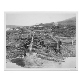 Anvil Creek Gold Mine Alaska 1916 Poster