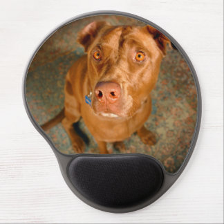 Anxious Chocolate Lab Pit Mix Dog Gel Mouse Pad