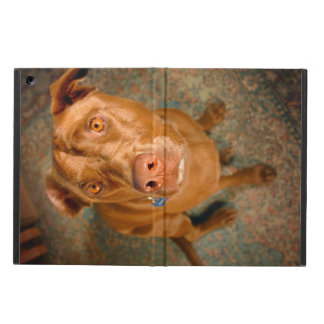 Anxious Chocolate Lab Pit Mix Dog iPad Air Case