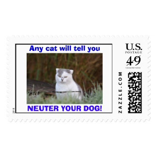 Any cat will tell you, NEUTER YOUR DOG! Postage Stamp