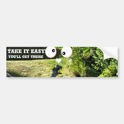 Any Occasions_ Bumper Stickers