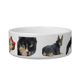 Any Pet Can Be Here Bowl