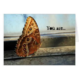 Any Use Spotted Butterfly Windowsill Photography Card