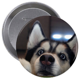 Anybody Out There? Pinback Button