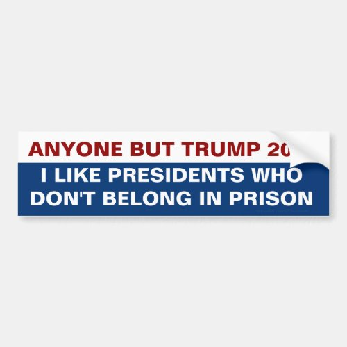 Anyone But Trump for President 2020 Prison Quote Bumper Sticker