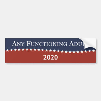 Anyone For President Bumper Sticker